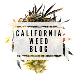California Weed Blog